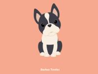 100 Days of Vector - Boston Terrier