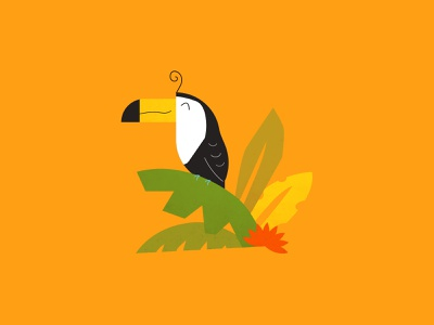 Toucan tropical leaves palm monstera rainforest tropical toucan bird illustration illustrator