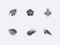 Ingredient Illustrations!