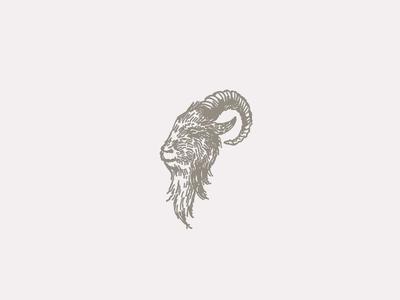 Mr. Goat sketch chin beard horn ram goat