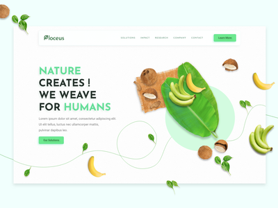 Plocues Natural Fiber First Phase particles web design web website design uiux uxdesign ux ui design ui minimal layout elements plant green natural nature