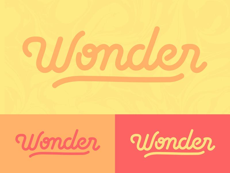 Wonder type wonder логотип custom type typography branding handlettering lettering design logotype logo
