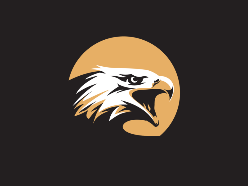 Angry Eagle Ranch adobe illustrator vector illustration graphic design logo design hunter eagle