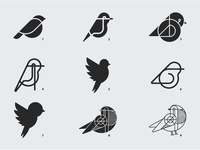 Birdy... Which one?