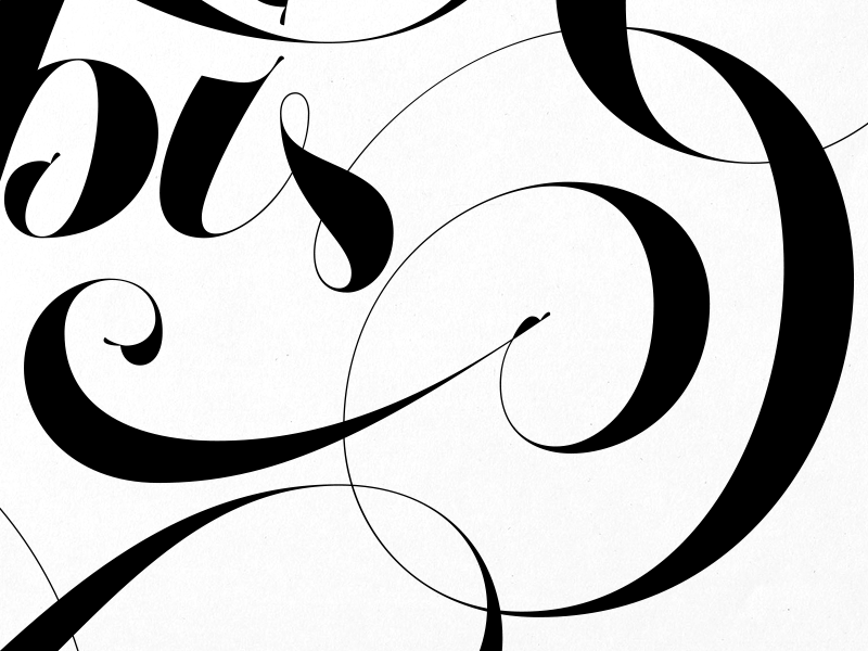 I Was Born For This (detail) joelvilasboas lettering script swashes