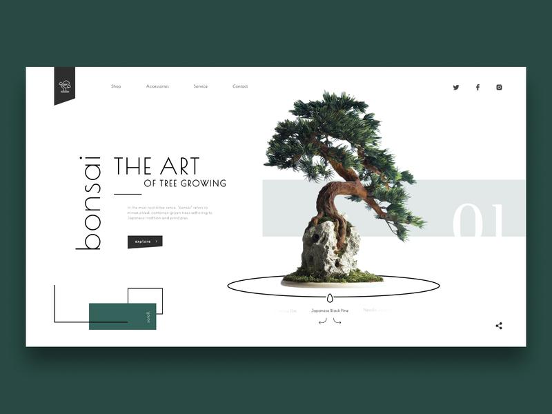 Bonsai Shop Concept
