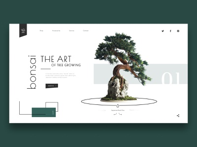 Bonsai Shop Concept plant nature green tree bonsai web design web ui minimalist design concept