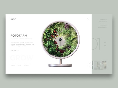 Rotofarm Concept vegetable health green minimalist concept web design web ui design