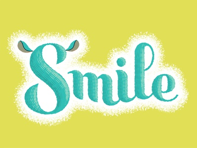 Chinchilla Smiles custom script illustrator adobe retro supply retro supply co texture kickstarter