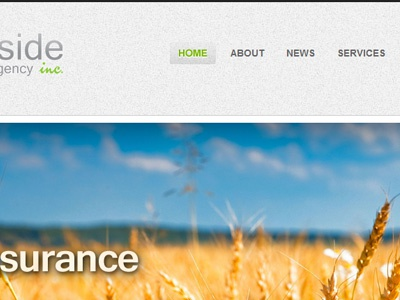 For All Your Insurance Needs site ui insurance farming home texture