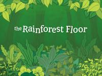 Rainforest assets