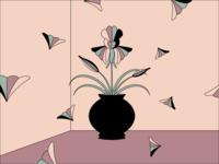 Windswept Irises practice editorial illustration movement adobeillustrator flowers flower line art minimal digital illustration