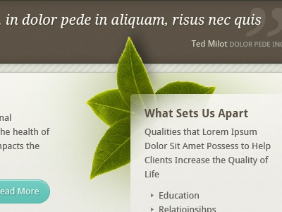 Health & Wellness Homepage health excercise leaf quote website