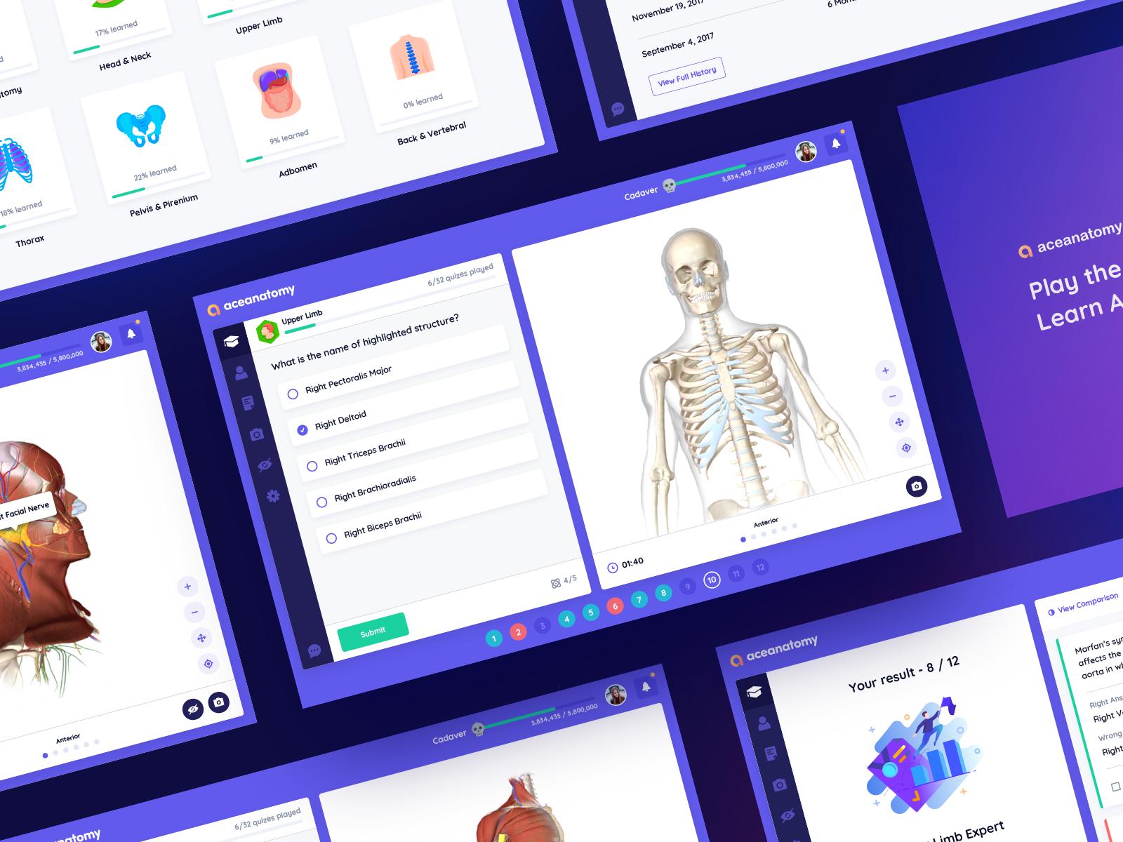 Ace Anatomy Quiz App 4x