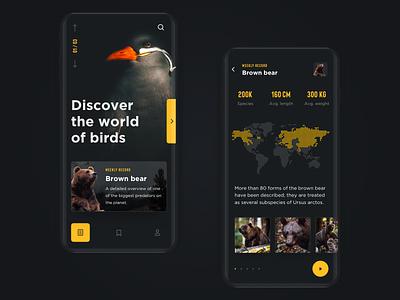 🐻Wild Life Encyclopedia design mobile promo dark interface ux ui birds bear encyclopedia wild nature application app