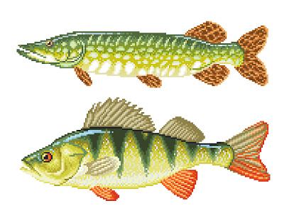 Pixel Art green fish illustration fish pike perch character design graphicdesign illustration pixels pixelartist pixelart