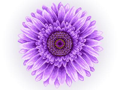 Pixel Art graphicdesign colors flower illustration flower violet gradient design illustration art illustration pixels pixelartist pixelart