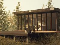 Modern Cabin 8