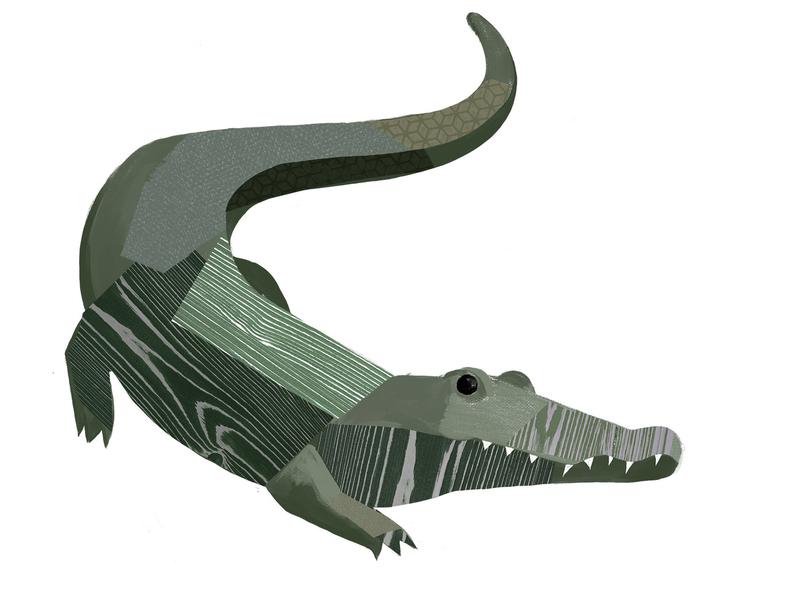 Croc muted crocodile croc collage animals illustration