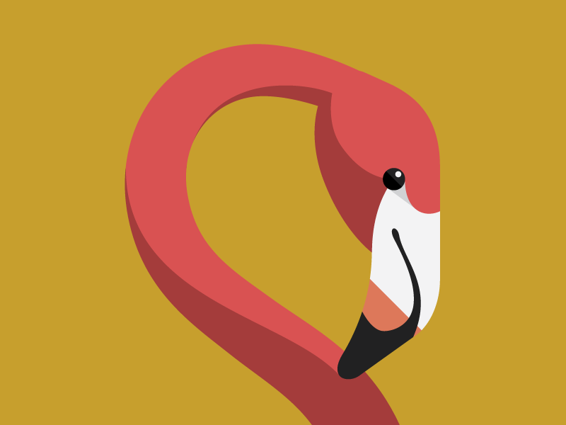 Flamingo tall chess chess app iphone flamingo