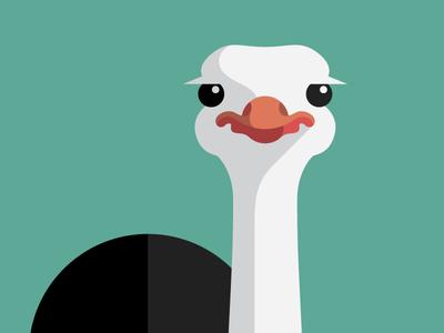 Ostrich tall chess chess app iphone ostrich