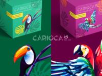 Carioca Packaging package brand design parrot toucan brazil brand coffee packaging design packaging brand identity procreate illustration branding