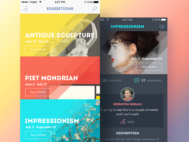 Art Gallery App feed sketch dashboard art gallery app timeline ios flat interface ux ui