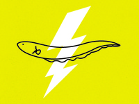Communication: Electric Eel