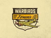 Warbirds Forever...The Sequel