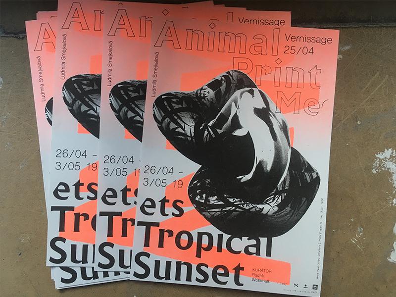 Let the flyers fly / Riso print extravaganza art print objekt graphic prague design flyers