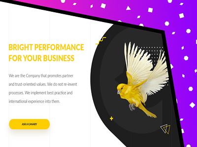 Website design for the consulting company branding design daily animation web digital design illustration digitalart development design art design