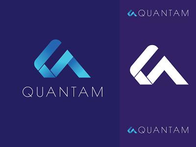 Quantam Logo a logo q logo simple shape logo professional modern market letter invest insurance grey gray finance elegant economy company brand capital business branding bank