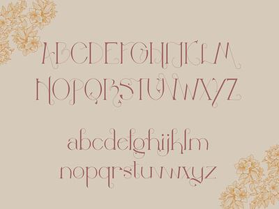 Gladiolus: A Modern Art Nouveau Typeface elegant branding elegant font art nouveau display typeface display font typography graphic design