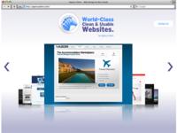 Zebra Website
