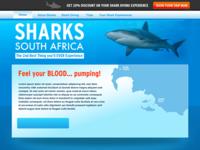 Shark Site WIP