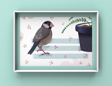 Birdie illustration art kids book illustration illustration
