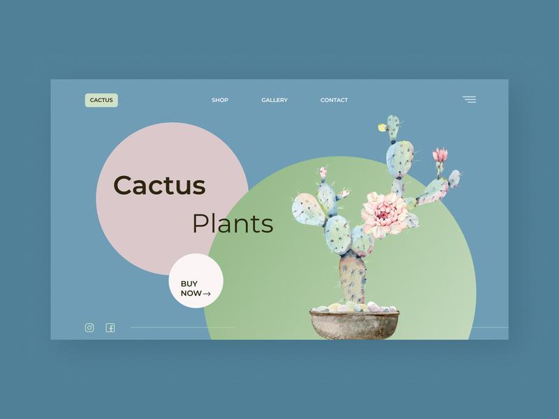 cactus illustration minimal typography ux ui vector web design