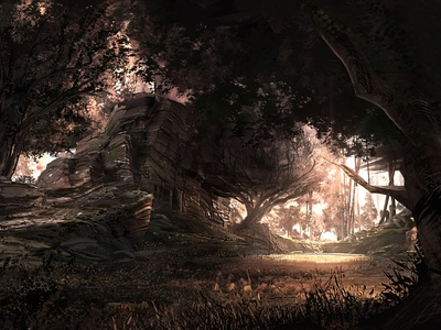 Golden Grove sunset trees rocks forest environment landscape