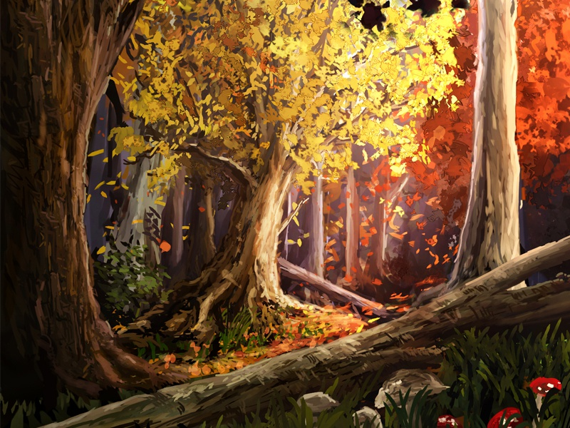 Fall forest red woods trees autumn landscape yellow environment