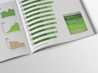 Bloomberg Impact – Information Design