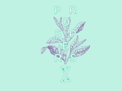 Prospers logo identity brand branding