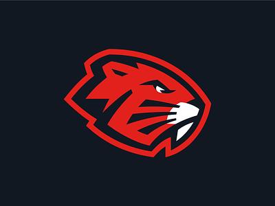 HC Bobruisk beaver logo design hockey logo hockey branding q10 sports logo sports identity sports design sports branding sports sport