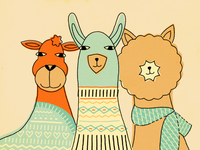 camelids in knits