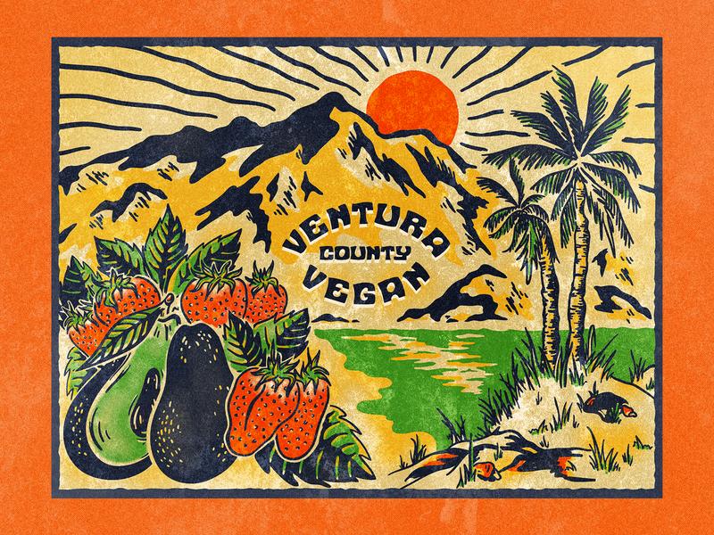 Ventura Vegan Alternate Colors