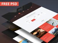 Freebie   Bino Landing Page PSD Template