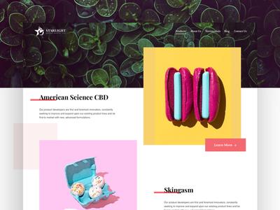 Blog Website Exploration