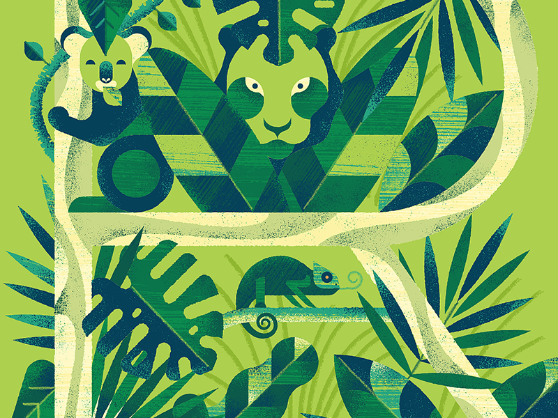 36 Days of Type - The Letter R green rainforest wild animals r jungle