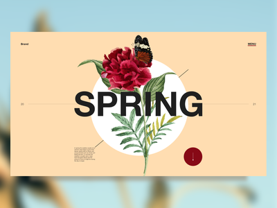 Spring - concept digitaldesign design digital web ui artdirection uidesign landingpage uiux visualdesign