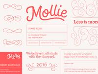 Mollie Wine Branding