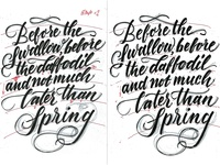 Lettering quote rough